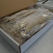 Frozen Fish Delivery - Pickerel