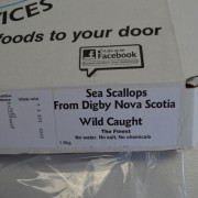 Nova Scotia Wild Caught Sea Scallops