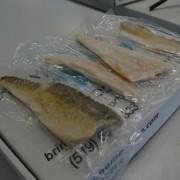 Ontario Fish Delivery - Pickerel