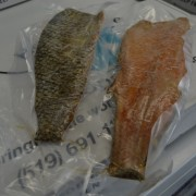 Smoked Trout Fillets - Fish Delivery