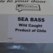 Wild Caught Sea Bass